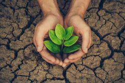 Nachholbedarf bei Nachhaltigkeitsstandards