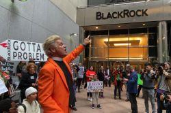Blackrock will sich von Nachhaltigkeitsrisiken trennen