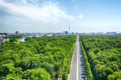Wohnimmobilien in Berlin: Weniger Verkäufe, höhere Umsätze