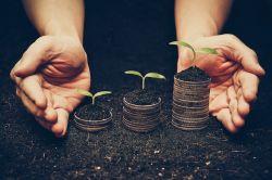 Studie: Investitionen wegen Klimawandel werden sich lohnen