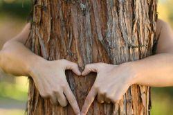 Deka startet nachhaltiges Fonds-Trio
