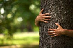 EU Nachhaltigkeitsoffensive birgt für Anleger Gefahren