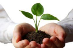 Europas Markt für nachhaltige Fonds wächst
