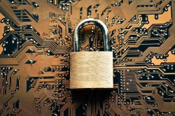 Studie: Angst vor Cyberkriminalität wächst
