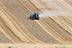 Bund unter Druck: Hilfe für Dürreversicherung gefordert