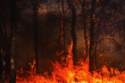 Talanx erhöht Prämien für Feuerschädenversicherung