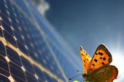 Studie: Erneuerbare Energien und Immobilien liegen bei Instis gleichauf