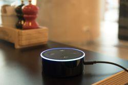 Digitalisierung: Immobiliensuche jetzt auch sprachgesteuert