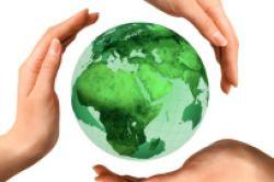 Studie: Nachhaltige Geldanlagen trotzen der Krise
