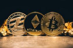 Farce für Kleinanleger? Kryptowährungen ein Markt der Superreichen