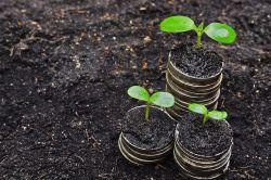 Wandelanleihen: Warum sie nachhaltig investiert sein sollten