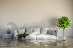 Überschwemmungen: Versicherungsdichte steigt