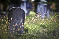Klassische Lebensversicherung auf dem Weg zum Nischenprodukt?