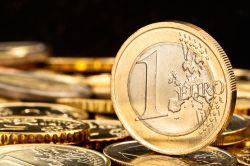 Euro feiert 20. Namenstag