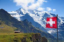 Caceis baut Präsenz in der Schweiz aus