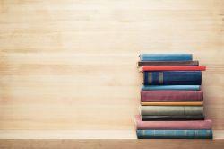 Versicherungsbestseller: Die meistverkauften Fachbücher