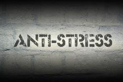 Studie: Digitale Medien stressen junge Bundesbürger