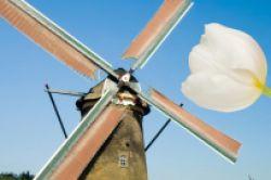 Wölbern Invest legt weiteren Holland-Immobilienfonds auf