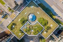 Keine Fata Morgana: Grün-blaue Oasen in der urbanen Betonwüste