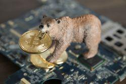 Gute Nachrichten für Krypto-Anleger