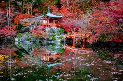 Japan: Warum sich Investments wieder lohnen