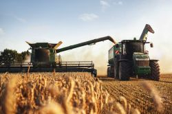 Bauern sollen bald günstiger an Dürreversicherungen kommen