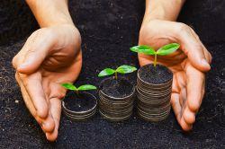 Vier Schritte zu mehr Nachhaltigkeit