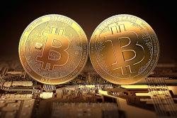 Riesige Vermögenslücke bei Bitcoin Cash