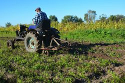 Bauern müssen bei Rentenbeginn Hof nicht abgeben