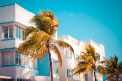 Paradiesisches Südflorida? Immobilien und zentrale Lage immer beliebter