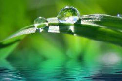 Vontobel offeriert nachhaltigen Aktienfonds