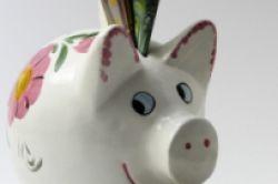 Sparschwein auf dem Vormarsch