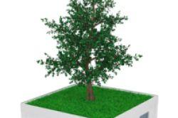 SVF lanciert Nachhaltigkeits-Dachfonds