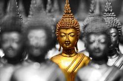 Matthews Asia legt konzentriertes Fernost-Portfolio auf