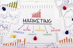 BCA baut Marketing-Unterstützung aus