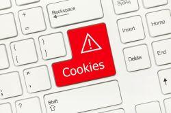 """Wie Sie mit """"Keksen"""" im Internet umgehen sollten"""