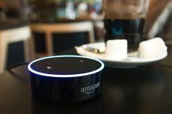 Alexa bewertet Immobilien für Planethome