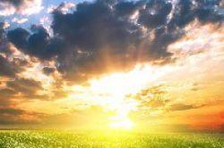 White Owl vertraut der Sonne über der Grande Nation