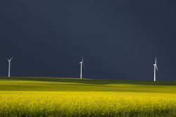 Auch Windwärts insolvent
