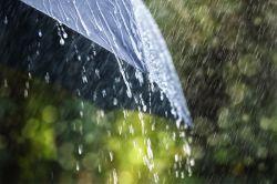 Keine Rekord-Schäden trotz Sommer-Regen in Deutschland