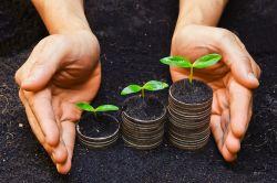 Dilemma zwischen Wachstum und Nachhaltigkeit