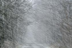 BdV: Privathaftpflicht bei Schnee und Eis unverzichtbar