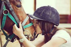 Pferde passgenau versichern: Über Stock und über Stein