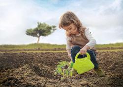 Die GrüneRente der Stuttgarter: gut für Sie und gut für die Umwelt